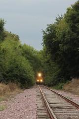 UP 1038 Take 7 (CC 8039) Tags: up trains gp60 gp40 rockford illinois