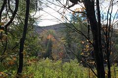 lp101618h2 (myvreni) Tags: vermont autumn fall nature outdoors