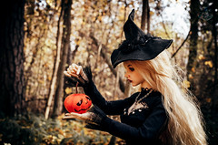 22 (Mara Fox) Tags: iplehouse bjd bianca yid nyid souldollchloe souldoll chloe iplehousebianca witches wichcraft doll autumn spells pumpkin halloween forest yellow black potion witchcraft