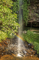 Crystal falls with Rainbow (Bev-lyn) Tags: waterfalls rainbow green nature nsw outdoor parks