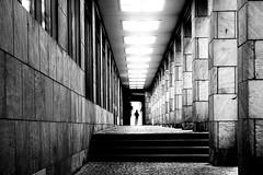 Dem Licht entgegen - Towards the light (cammino5) Tags: frankfurt schirn kunsthalle gegenlicht hessen deutschland sw oktober 2018 säulengang