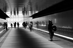 Ginza Underground Pathway (seiji2012) Tags: 東京 白黒 銀座 銀座six 地下道 反射 japan tokyo ginza bw reflection happyplanet