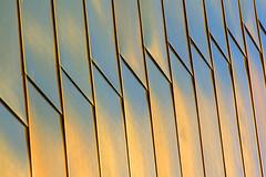 Facade with metal panels (Jan van der Wolf) Tags: map183103v metal panels panelen gevel facade architecture architectuur denhaag lijnen lijnenspel interplayoflines playoflines abstract shingles sportcampus zuiderpark rhythm faulknerbrowns