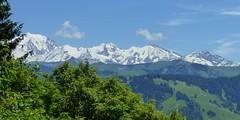 Chaîne du Mont Blanc, vue en montant au Praz Véchin. (ViveLaMontagne67) Tags: france alpes alpen alps savoie savoy aravis montblanc bleu panoramique été ensoleillé sunny summer panoramic blue sky landscape mountain arbres 250v10f 500v20f