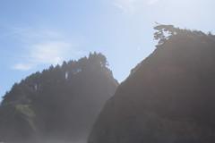 Oceanside (Tony Pulokas) Tags: summer oregon oceanside tilt blur bokeh rock basalt forest shortbeach tree spruce sitkaspruce seastack lensflare sunflare
