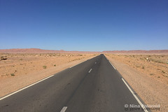 Into the Great Wide Open (nina.polareuth) Tags: stonedesert sahara maroc morocco fellfield lonely
