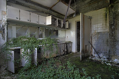Fuck your Similes & Metaphors, I'm just tryna Set A War I can only self Destruct, I am Like the Predator (RiddimRyder) Tags: abandoned derelict urbex beautyindecay urbanexploration hospital asylum corridor tuberculosis tb nurses medicine medical waste morgue healthcare canon riddimryder badhombres