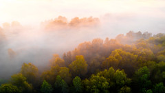 Autumn forest and sunrise (czdistagon.com) Tags: dawn fog nature landscape morning green forest sun scenic view sky autumn background sunrise outdoor travel cloud beautiful natural mist mountain drone scenery sunset environment hill sunlight aerial misty light jungle spring adventure wild season valley foggy tropical rainforest park plant trees tourism river scene colorful water mountains russia explore