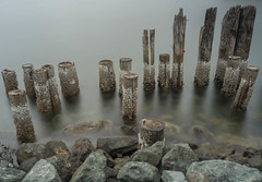 Beginning of the End (sunrisesoup) Tags: pilings dock abandoned dilapidated distressed bellingham wa usa september 2018 boulevardpark longexposure