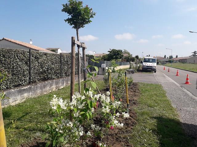 Fleurissement à Boé Village