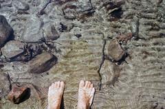 Killbear (.grux.) Tags: asahipentaxsv m42 supermulticoated takumar35mmf35 film kodakgold200 sunnyf16 feet beach water rocks ripples sand twigs leaf swimming killbearprovincialpark georgianbay