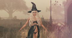 A Mystical Halloween - Nature's Magic (scarlettrose.karsin) Tags: mystictimbers halloween witch nature sl secondlife catwa maitreya mystic spell sim magic