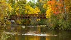 Bridging Fall_in Explore 10.11.12 (maryanne.pfitz) Tags: trail bridge woodlands forest fall foliage autumn river water reflections map bridgingfall9832pano panorama mary anne pfitzinger landscape manitowishwaters wi vilas county wisconsin