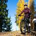bikers in Tahko by autumn