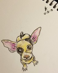 Tiny pupper. (SpedBug) Tags: dog tiny pup coloredpencils illustration