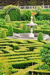 20110429 Amaze ([Ananabanana]) Tags: nikon d40 tamron70300mm tamron70300mmaff4556dildmacro tamronaff4556dildmacro tamronaf70300mmf456dildmacro 70300mmf456dildmacro tamron 70300mm 70300 gimp photoscape nikonistas nikonista england uk unitedkingdom hatfield hatfieldhouse herts herfordshire royalhatfieldpalace garden gardens maze footmaze minimaze fountain gardening shrubs bushes plants