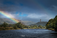 Storm Ali - 19 Sep 2018 - 95 (ibriphotos) Tags: stormali rainbow wallacemonument forthvalleycollege doublerainbow stirling riverforth weather storm tree