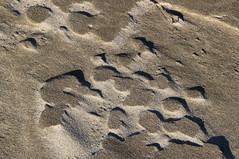 Wind-formed shapes, Netarts Bay beach, Oregon (nikname) Tags: sandshapes shadows abstractsandshapes windformedshapes netartsbaybeach oregonbeaches