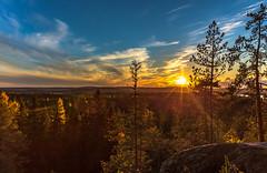 Sunset in Kuopio on October 2 (VisitLakeland) Tags: finland kuopio kuopiotahko lakeland auringonlasku forest luonto luontokohde maisema metsä nature outdoor scenery sunset