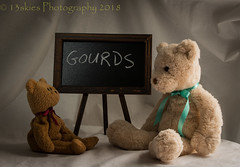 Gourds (HTBT) (13skies (broke my wrist)) Tags: chalkboard learning words teaching helping understand listening knowing silly happyteddybeartuesday sonyalpha99 sony chalk blackboard htbt teddy teddybeartuesday