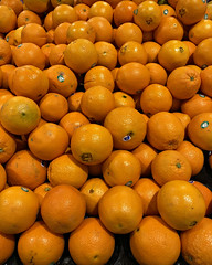2018 Sydney: Oranges (dominotic) Tags: 2018 food fruit oranges yᑌᗰᗰy iphone8 orange sydney australia
