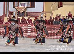Gelugpa monks dancing at the Diskit Monastery's Gustor Festival, Nubra Valley, Ladakh, India (jitenshaman) Tags: travel worldtravel destination destinations asia asian india indian ladakh ladakhi leh tourism tibetan tibetanbuddhism buddhist buddhism diskit deskit diskitgompa deskitgompa monastery gompa monastic monk monks festival gustor diskitgustor deskitgustor tradition traditions traditional nubra nubravalley dance dances costume perform ritual culture cultural hat hats costumes religion gelugpa yellowhat