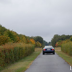 20181007 - Maserati Coupe 4200 GT 390cv - N(2490) - CARS AND COFFEE CENTRE - Chateau de Longue Plaine thumbnail