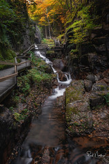 Flume Gorge, NH (Reid Northrup) Tags: franconianotchstatepark newhampshire flumegorge gorge water waterfall longexposure nikon rrs rocks forest trees autumn fall stream mountliberty nature landscape leaves