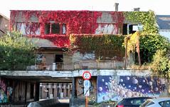 Mural by James Cochran (Rick & Bart) Tags: hasselt mural belgium limburg streetart art rickvink rickbart graffiti canon eos70d city urban jamescochran