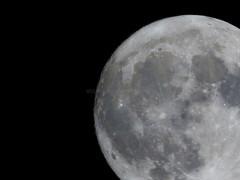 Full moon 99% (Bernal Saborio G. (berkuspic)) Tags: moon fullmoon solarsystem crater astronomy astrophoto astrophotography