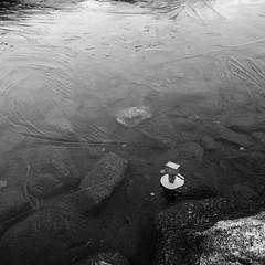 Dieter on very thin ice @Lais digl Crap Alv (Toni_V) Tags: m2409595 rangefinder digitalrangefinder messsucher leicam leica mp typ240 type240 28mm elmaritm12828asph laisdiglcrapalv dieter danbo danboard ice eis bergsee mountains albula bw monochrome blackwhite schwarzweiss square graubünden grisons grischun switzerland schweiz suisse svizzera svizra europe spinaspreda alps alpen ©toniv 2018 181020