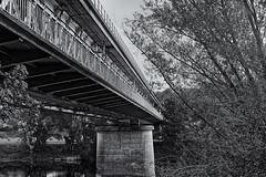 pont ferroviaire abandonné (chatellerault) (ludovicthiaudiere) Tags: konicahexanon57mmf12 bridge steel noiretblanc sonyilce7m3