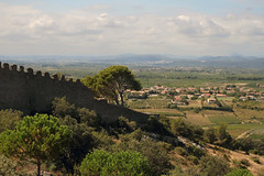 paysage en Languedoc (Steph Blin) Tags: languedoc roussillon 34 hérault france paysage landscape picsaintloup horizon été summer tourisme visit languedocroussillon remparts arbres trees