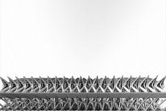 Spine (Maerten Prins) Tags: spain spanje valencia calatrava santiagocalatrava architect architecture modern cityofartsandsciences ciutatdelesartsilesciències curve curves symmetry sky building geometry geometric negativespace museodelascienciaspríncipefelipe concrete blackandwhite