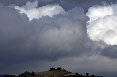 _IMG6142 (polipao) Tags: montefeltro marche colline clouds nuvole hills cielo sky casadicampagna countryhouse gabbiani seagulls ilobsterit nuvoloso temporale thunderstorm cloudy zooming ingrandire centinaia uccelli alberi