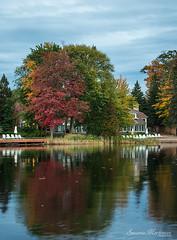 Beautiful Muskoka (Rainfire Photography) Tags: muskoka autumn fall retreat getaway reflections nature nikon