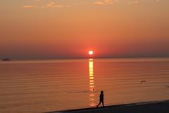 Frühsport (Hans-Jürgen Böckmann) Tags: frühsport strand ostsee lübeckerbucht scharbeutz sonnenaufgang balticsea sunrise