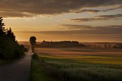 DSC_8337 as Smart Object-1 (Piotr_Gd) Tags: krajobraz sunset
