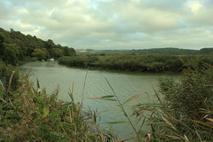 Autumn Arun (ekaterina alexander) Tags: autumn arun river landscape boat boats clouds reeds hills tree trees england sussex september ekaterina alexander photography pictures