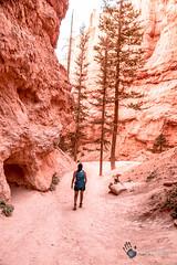 Utah_2018_ (116 of 144) (jasinrodriguez) Tags: zion trekking family narrows subway zionnationalpark nationalparks outdoors