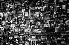 MAKE REAL PHOTOS (Diaffi) Tags: cameras polaroid analog ishootfilm zeissikonzm zeisscbiogont2828zm ilfordfp4expired2012 selfdeveloped monochrome blackandwhite