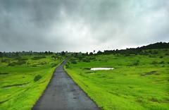 The road less travelled (Debmalya Mukherjee) Tags: tatai mobilephotography maharastra igatpuri motog5splus road monsoon lushgreen debmalyamukherjee