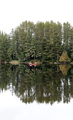 Red canoe. (Gillian Floyd Photography) Tags: red canoe pine trees lake algonquin park