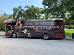 Charlotte's Web Hemp Extract Ad On Tourist Bus Miami (Phillip Pessar) Tags: charlottes web hemp extract ad bayside marketplace tourist bus miami