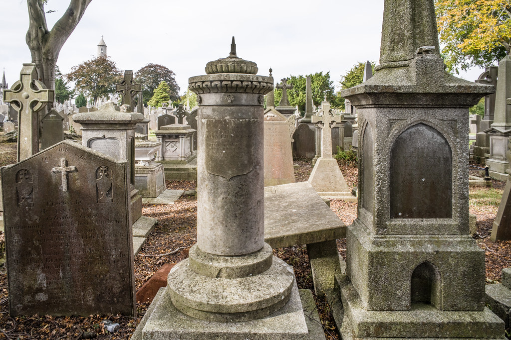 SEPTEMBER 2018 VISIT TO GLASNEVIN CEMETERY [ I USED A BATIS 25mm LENS AND I EXPERIMENTED WITH CAPTURE ONE]-144819