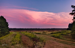 Sunset at Holland Bottoms WMA (gary_photog) Tags: 235milvus zeissmilvus zeissmilvus352 sunset clouds nikond850 manualfocus