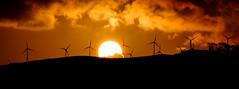 The Sun Turbines (ajecaldwell11) Tags: sun xe3 newzealand sunset ankh fujifilm tararua clouds sky windturbines woodville caldwell manawatu light