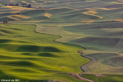 Palouse (aland67) Tags: landscape longexposure polarfilter goldenhour green grass lines trees sunset steptoe butte state park washington usa