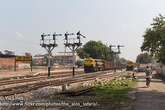 180921_26 (The Alco Safaris) Tags: dlw emd wdg4d 70618 dhuri junction jn broad gauge freight train indian railways