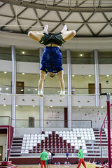 ginastica_doha_21out2018_treinomasc_abelardomendesjr-42 (Ministerio do Esporte) Tags: doha mundialdeginásticaartística qatar ginásticaartística